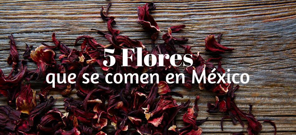 5 Flores Que Se Comen En Mexico